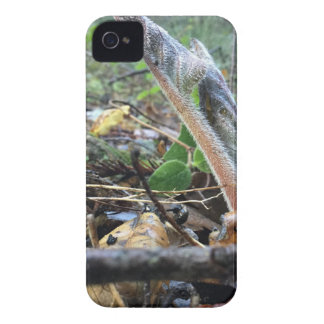 Hound's Tongue Sproutling Case-Mate iPhone 4 Cases