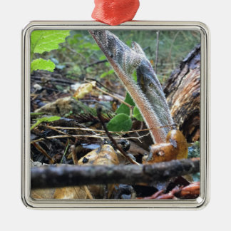 Hound's Tongue Sproutling Metal Ornament
