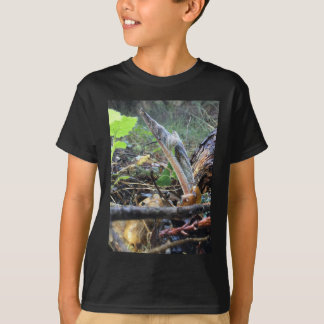 Hound's Tongue Sproutling T-Shirt