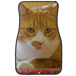 House cat car mat