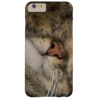 House cat covering eyes while sleeping barely there iPhone 6 plus case