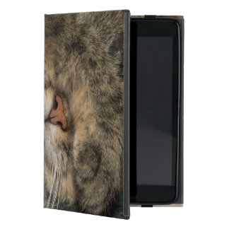 House cat covering eyes while sleeping case for iPad mini