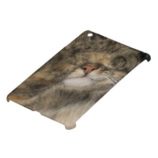 House cat covering eyes while sleeping iPad mini cases