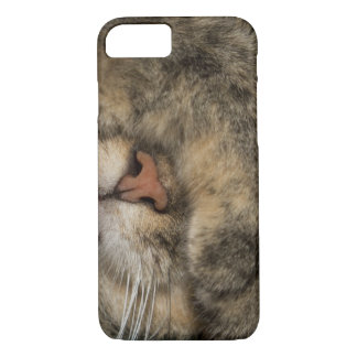 House cat covering eyes while sleeping iPhone 7 case