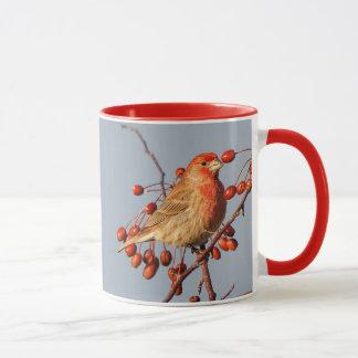 House Finch with Hawthorn Berries Mug