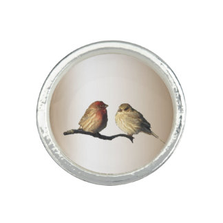 House Finches Ring