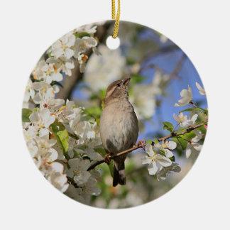 House sparrow and spring blossoms ceramic ornament