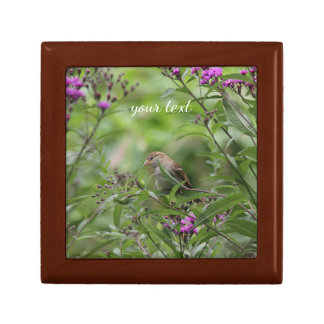 House sparrow in the garden gift box