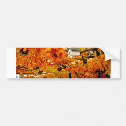 House Tree Bumper Stickers