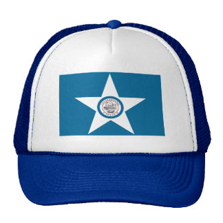 Houston Flag Cap