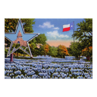 Houston Texas Blue Bonnets with Flag Posters