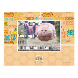 Hover kitteh postcard