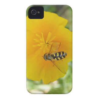Hoverfly and Californian Poppy Blackberry Bold Cas Blackberry Bold Cover