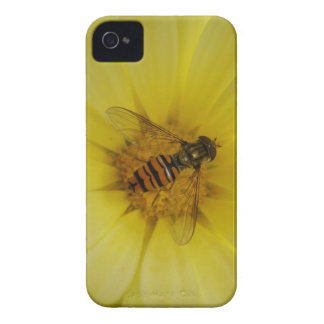 Hoverfly on a Marigold Blackberry Bold Case