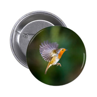 Hovering robin photograph on a badge