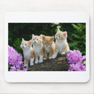 How Do I Get Down Kittens Mousepads