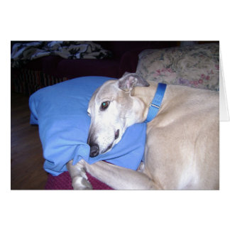 How Every Greyhound should Live Card