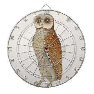 How now Bay Owl? Dartboard