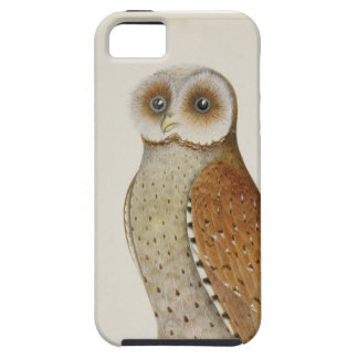 How now Bay Owl? iPhone 5 Cover