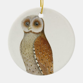 How now Bay Owl? Round Ceramic Decoration