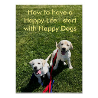 How to have a Happy Life...start with Happy Dogs Poster