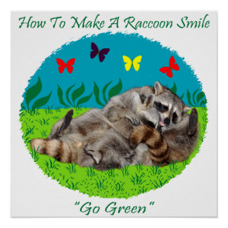 How To Make A Raccoon Smile Poster