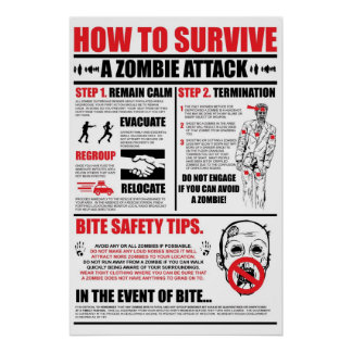 How To Survive A Zombie Attack Poster