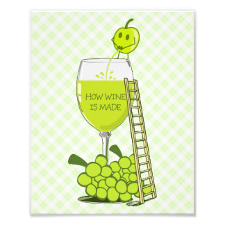 How Wine is Made Funny Illustration Photograph