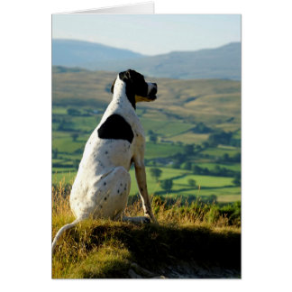 Howgillhounds cards Pointer and landscape