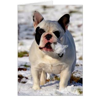 Howgillhounds French Bulldog Susan Card