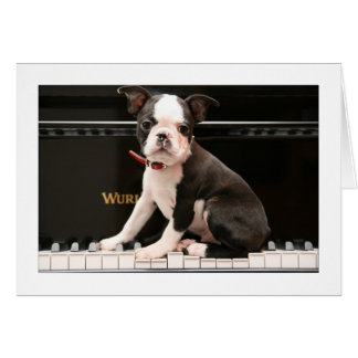 Howie on the Piano Card