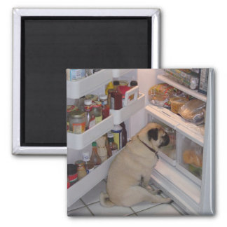 Howie Pee Pugpants Refrigerator Magnets