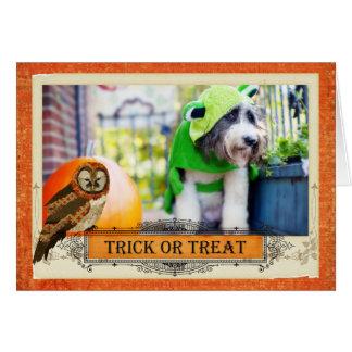 Howl-o-ween Owl Card