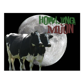 Howling Cows Moon Postcard