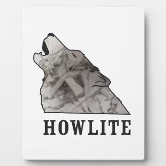 howlite.ai plaque