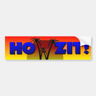 Howzit from Hawaii Bumper Sticker