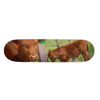 Hoy Cow!!! Custom Skateboard