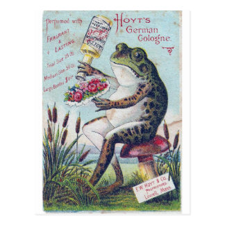 Hoyt's German Cologne Frog Postcard