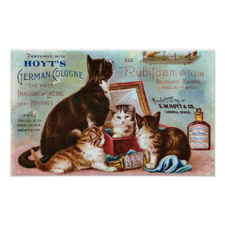 Hoyt's German Cologne Vintage Advertisement Poster