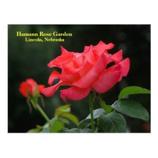 HRG Postcard #335N  0335