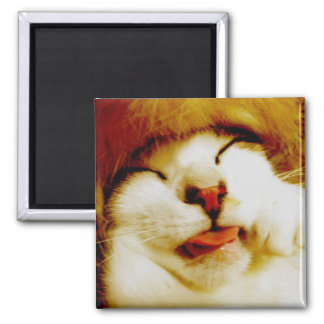 hu pe ro invitation square magnet
