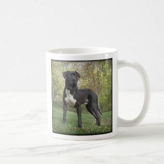 Hudson - I Love My Pit Bull Terrier! Mug