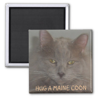 HUG A MAINE COON SQUARE MAGNET