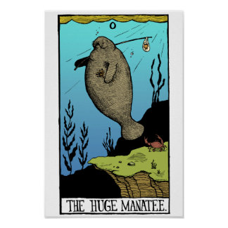 Huge Manatee poster
