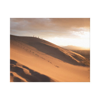 Huge Sand dune Canvas Print
