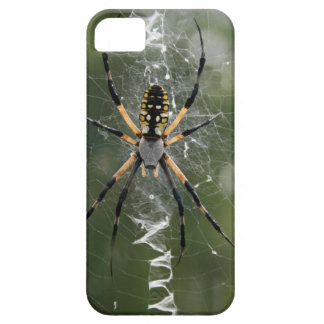 Huge Spider / Yellow & Black Argiope iPhone 5 Case