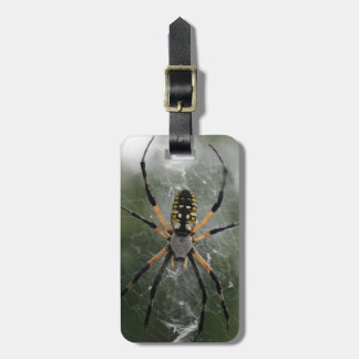 Huge Spider / Yellow & Black Argiope Luggage Tag