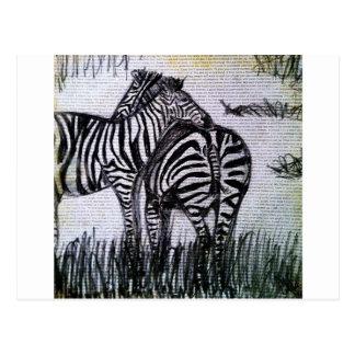 Hugging Zebras Postcard