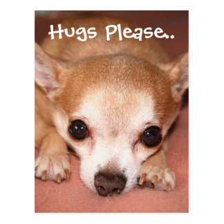 Hugs Please.. Postcard