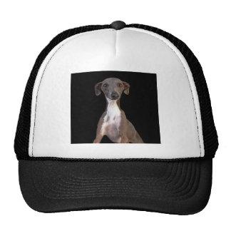 Huh? Mesh Hat